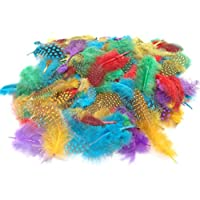 130+ Coloured Feathers Spots - Crafts Collage Hats Costume Millinery Fly Fishing