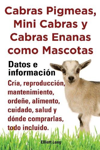 Cabras Pigmeas, Mini Cabras y Cabras Enanas Como Mascota. Datos E Informacion. Cria, Reprodu