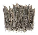 ERGEOB® 100 piezas DIY accesorios de la joyería calderero plumas de faisán cola de plumas plumas naturales plumas 10-15cm