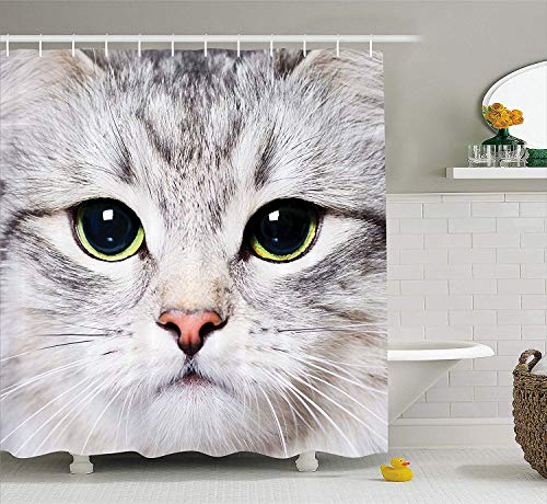 BUZRL Cat Decorations Gray Shower Curtain Cute Cat Print Kitten Kitty Closeup Portrait Picture Digital Photography Lovely Pet Polyester Fabric Shower Curtain, Grey Ivory,60x72 inches