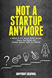 Not A Startup Anymore: A Method To Turn Around Startup Burnout, Express Your Passion And Increase Business Profits In 6 Months