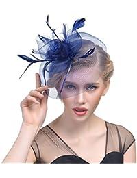 ZYCC Pince à Cheveux Élégant Plume Fascinator Mesh Voile Chapeau Mariage Fête Cocktail