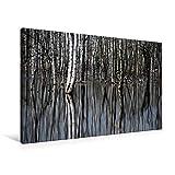 Premium Textil-Leinwand 90 cm x 60 cm quer, Birkenwald | Wandbild, Bild auf Keilrahmen, Fertigbild auf echter Leinwand, Leinwanddruck: Birkenwald im Wasser - mit Spiegelung (CALVENDO Natur)