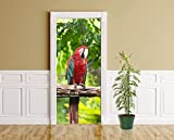 Türaufkleber - Macaw Papageien - 90 x 200 cm - Aufkleber - Türbild - Türfolie - Bild für Tür - Tier - Vogel - Ara - Südamerika - Gefieder - bunt - farbenfroh