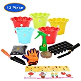 "#6: KRAFT SEEDS BEST FIVE FLOWER SEEDS FOR HOME GARDEN WITH ONE PAIR HAND GLOVES FOR YOUR GARDEN, 2 GARDENING TOOLS ONE GARDEN TROWEL, ONE KHURPI FOR SMALL POTS AND BLOCK POT/PLANTER 3"" (SET OF 5pcs.), WITH ORGANIC MANURE & KRAFT AGRO PEAT FOR FAST GERMINATION, ONE SEEDLING TRAY (18 HOLES) WITH ALSO SPRAYER PUMP (100ml.) THIS SPRAYER PUMP IS A USED TO SPRAY A LIQUID OR WATER.) BY KRAFT SEEDS …"