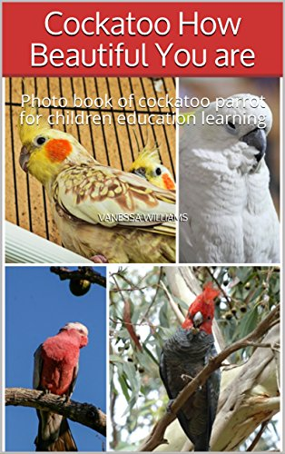 Cockatoo How Beautiful You are: Photo book of cockatoo parrot for children education learning (photo book animals 13) (English Edition) -