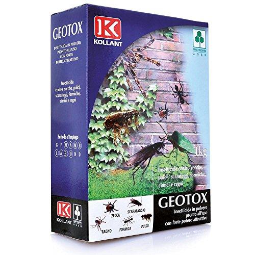 Adama Insetticida Geotox in Polvere kg. 1 Orto E Giardino, Multicolore, Unica