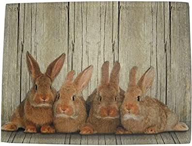 Amazon.de: waschbare Fußmatte Hasen - Kaninchen Familie