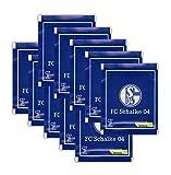 Panini - FC Schalke 04 Offizielle Stickerkollektion 2017 - 10 Booster Packungen 50 Sticker - Deutsche Ausgabe