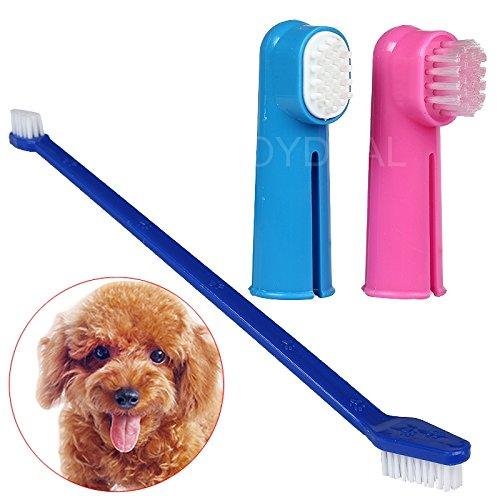 katzeninfo24.de Alice&Tom 3pcs NEUE Haustier-Zahnpflege Welpen-Hundekatze Zahnbürste Dental Cleaning Set Werkzeuge