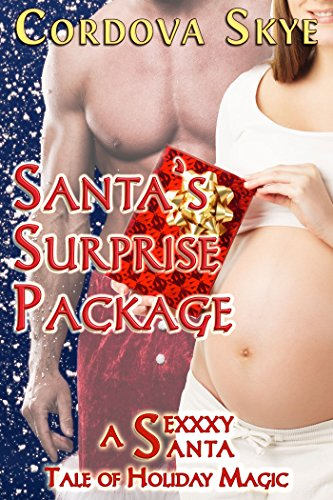 Santa's Surprise Package: A Sexxxy Santa Tale of Holiday Magic (Naughty & Nice Book 3)