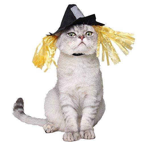 Coppthinktu Vogelscheuche Hut Haustier Kostüm Halloween Katze Haustier Kopfbedeckung Kostüm Party Cosplay Zubehör für Katze Kätzchen, Large, Mehrfarbig