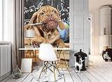 DekoShop Fototapete Vertical Vlies Tapete Tiere/Fauna,Für Kinder Wandtapete Lehrer Hund AMD10430VEA VEA (206cm. x 275cm.)