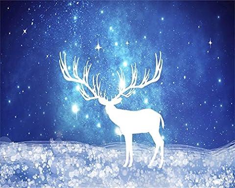 Aaloolaa 3x 2.5m Beau Ciel étoilé Photographie Dessin animé toiles