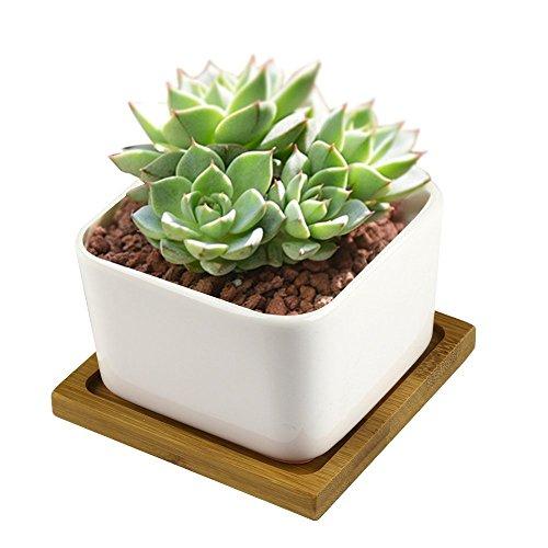 all-ingrosso-vasi-per-fiori-y-m-tm-eleganza-interna-per-casa-e-vasi-da-fiori-in-ceramica-piante-vaso