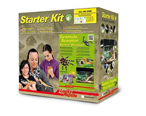 """Lucky Reptile SK50TS-B Starter Kit """"Spinne plus Skorpion"""", 50 cm, schwarz"""