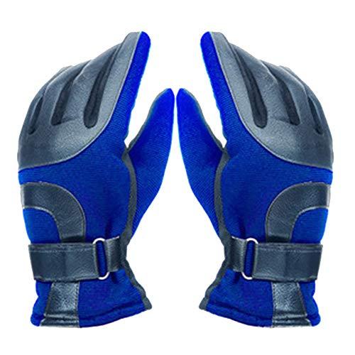 5b3073e44922f2 YOYGADING Handschuhe Männer Winterhandschuhe Stilvoll Warm zum Radfahren  Skifahren Motorrad Handschuhe,Blau, 25cm