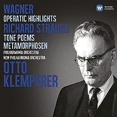 Wesendonk Lieder (orch. Mottl) (2006 Remastered Version): Im Treibhaus
