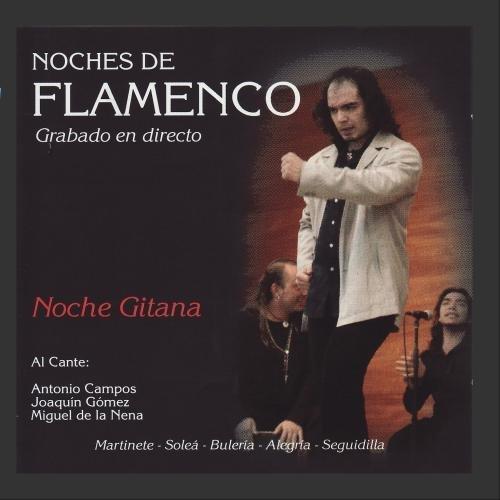 Noches de Flamenco - Noche Gitana by Joaquin Gomez, Miguel de la Nena, Manuel Castilla, Jose Manuel Saucedo, Isaac Vigueras Antonio Campos