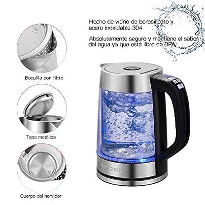 Doppelwandiger-Glas-Wasserkocher-Elektrischer-Wasserkessel-mit-prziser-variabler-Temperaturkontrolle-und-Warmhaltefunktion-17L-Schnellkocher-mit-automatischer-Trockenschutzfunktion