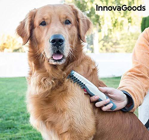InnovaGoods IG115175 Elektrischer Kamm für Hunde