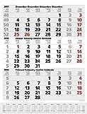 3-Monats-Planer Comfort Grau 2018: 3-Monatskalender groß I Wandplaner / Bürokalender mit Datumsschieber, Vor-und Nachmonat und Jahresübersicht I 30 x 39 cm