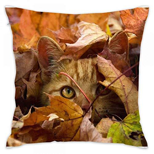 CHKWYN Animal Cat Peek A Boo Print Decorative Throw Pillow Covers/Handmade Pillow Shams, Pillows Inserts Decorative Throw Pillows,Cushion Size:16 x 16 inches Peek-a-boo Slip