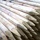 lanlee Supplies 1,2m (122cm) X 50mm (5,1cm) Maschine aus Holz rund grün behandelt Zaun Pfosten Pfähle