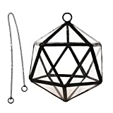 Sharplace Pflanzbehaelter Glas Terrarium Miniatur-Gartengewaechshaus + Metallkette Blumentopf
