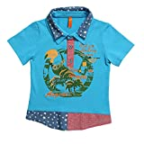 Lilliput Baby Boys T-Shirts (8907264060875_Blue_12-18 Months)