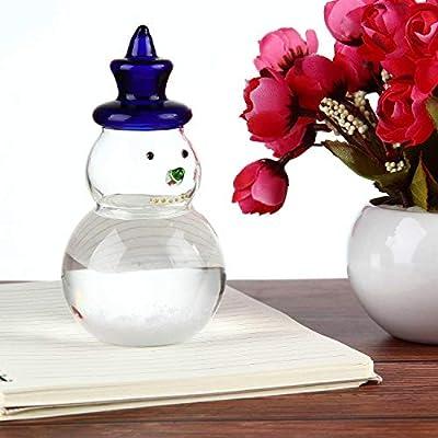 KOBWA Storm Glass,Weather Forecaster Barometer Bird Shape Crystal Desktop Decor Glass Crafts Creative Stylish Gift for Home Office Birthday Valentines