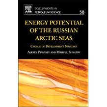 Energy Potential of the Russian Arctic Seas: Choice of Development Strategy (Volume 58) (Developments in Petroleum Science (Volume 58), Band 58)