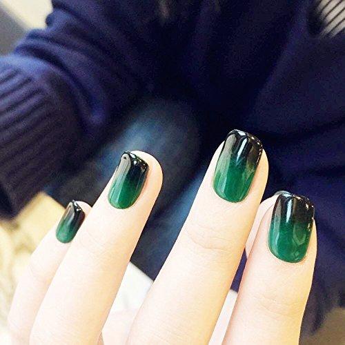 (YuNail Nail Kunstnägel mit Farbverlauf, rund, Acryl, Schwarz, Grün, 24 Stück)