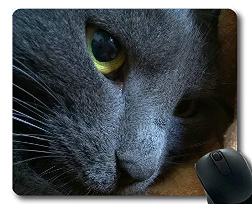 Yanteng Estera del ratón del Juego, cojín de ratón cercano, Estera del ratón para la computadora cat058