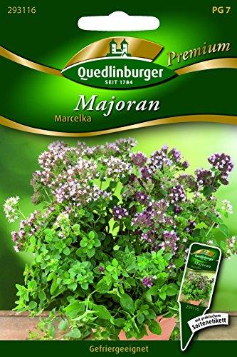 Majoran Marcelka - Majorana hortensis QLB Premium Saatgut sonstige Kräuter