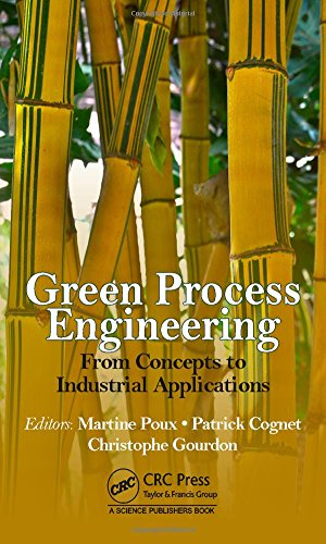 green-process-engineering-from-concepts-to-industrial-applications
