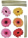 XXL Wandtattoo / Sticker - Gerbera mit Stengel - Aster Blüten Blumen - selbstklebend für Wohnzimmer und Deko Wandsticker Aufkleber