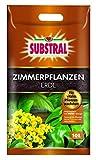Substral Zimmerpflanzenerde - 10 l -