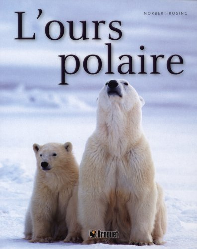 L'ours polaire