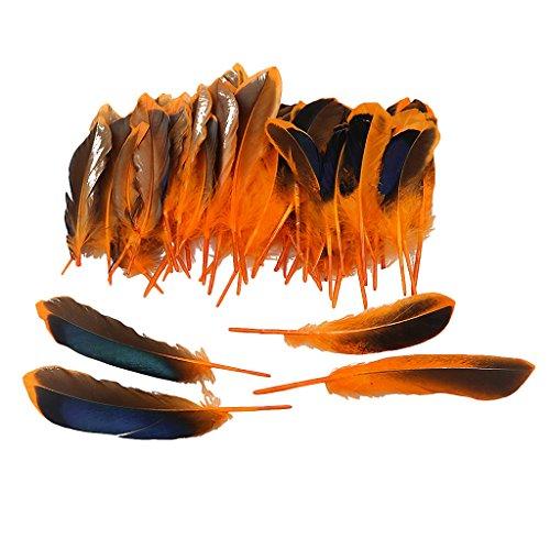 Baoblaze 50er Set Natur Dekoration Ente Feder Party Kostüm Deko Fertigkeit Basteln Feder Naturfedern Boho Hippie Indianer Kostüm - Orange