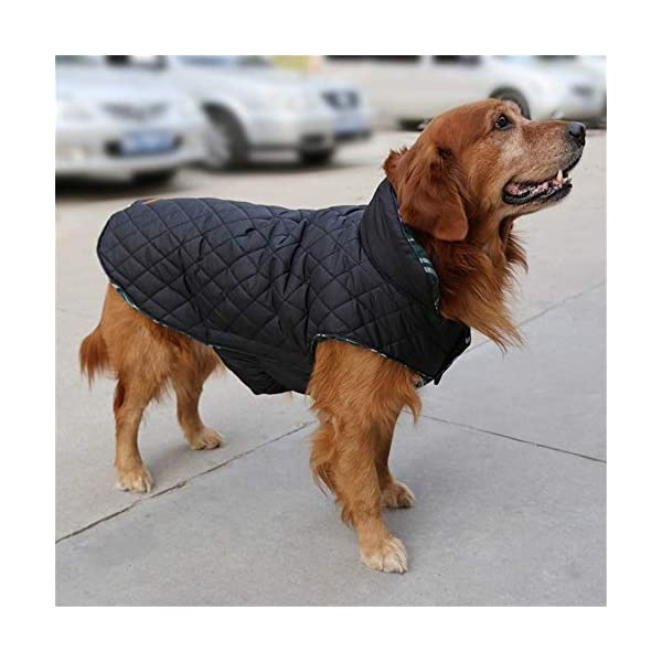 Morezi Cozy Waterproof Windproof Reversible British style Plaid Dog Vest Winter Coat Warm Dog Apparel for Cold Weather Dog Jacket for Double sided available 6