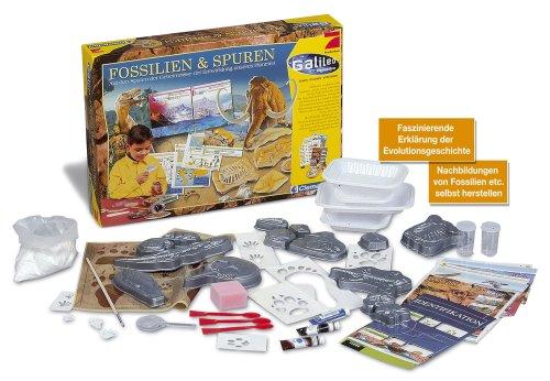Galileo - Fossilien und Spuren