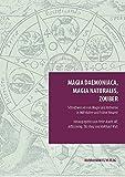 Magia daemoniaca, magia naturalis, zouber: Schreibweisen von Magie und Alchemie in Mittelalter und Früher Neuzeit (Episteme in Bewegung.)