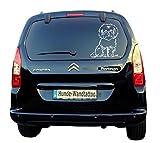 amberdog Bolonka Zwetna Autoaufkleber Fensterfolie Art.Nr.AT0117 Aufkleber für Auto Wohnmobil Wohnwagen Autoaufkleber (20x15cm, weiß)