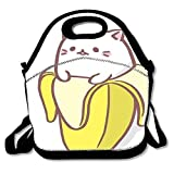 Super Cute Insulated Lunch Bag Tote Reusable Waterproof School Picnic Carrying Gourmet Lunchbox Container Organizer For Women, Men, Adults, Kids, Girls and Boys - Kitty Hug