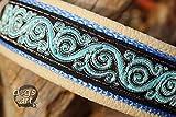 Hundehalsband Leder Royal Candy Creme Schwarz Blau Silber Klickverschluss Alu Hundehalsband mit Gravur
