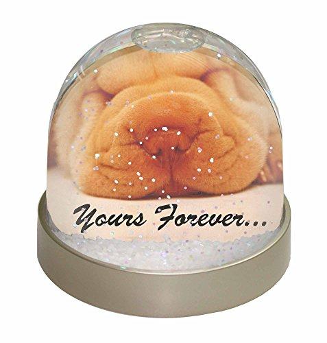 Pei Dome (Shar-Pei -Welpen ' Yours Forever' Schneekugel Globus Wasserball Tier Weihnachtsg)