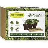 Sembra Culinari - Kit de cultivo
