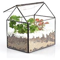 House terrario in vetro a forma di casetta, da tavolo fioriera vaso vaso da fiori con coperchio basculante per piante Felci e muschio Cactus