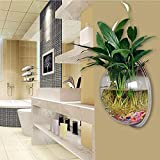 Cocosmart Wall Decorations For Living Room Wall-Hanging Fish Bowl Acrylic Wall-Mounted Plant Pot 0.5 Gallon Fish Tank 7.67-In